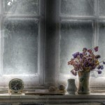 Still Life On A Window Sill Hdr HD Desktop Background