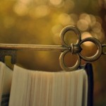 6996516-bokeh-book-key